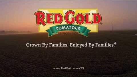 Red Gold Ketchup Foodservice